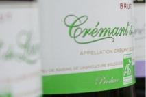« Zéro herbicides » ou cépages résistants  :  des vins attirants pour les consommateurs