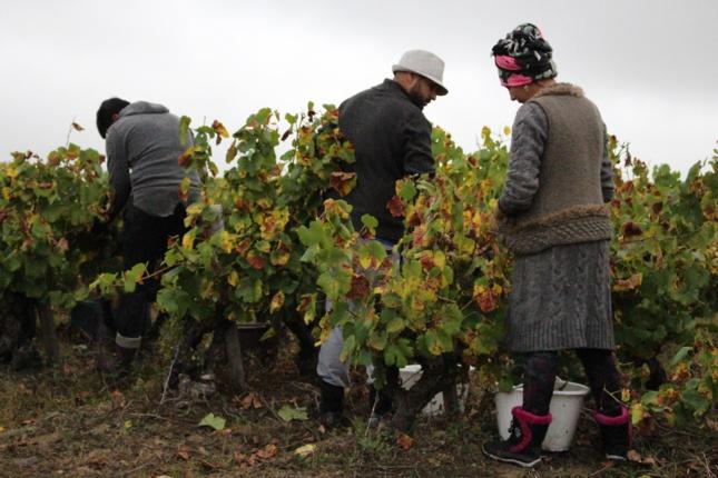 Ce projet d'habitat ouvrier doit fidéliser les salariés du groupement, dont ceux issus de la communauté roumaine.