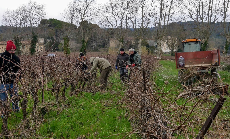 Des vignerons tourangeaux solidaires de l'Aude