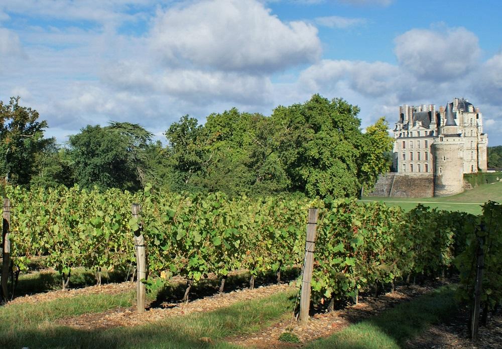 Bienvenue à l'Anjou-Brissac