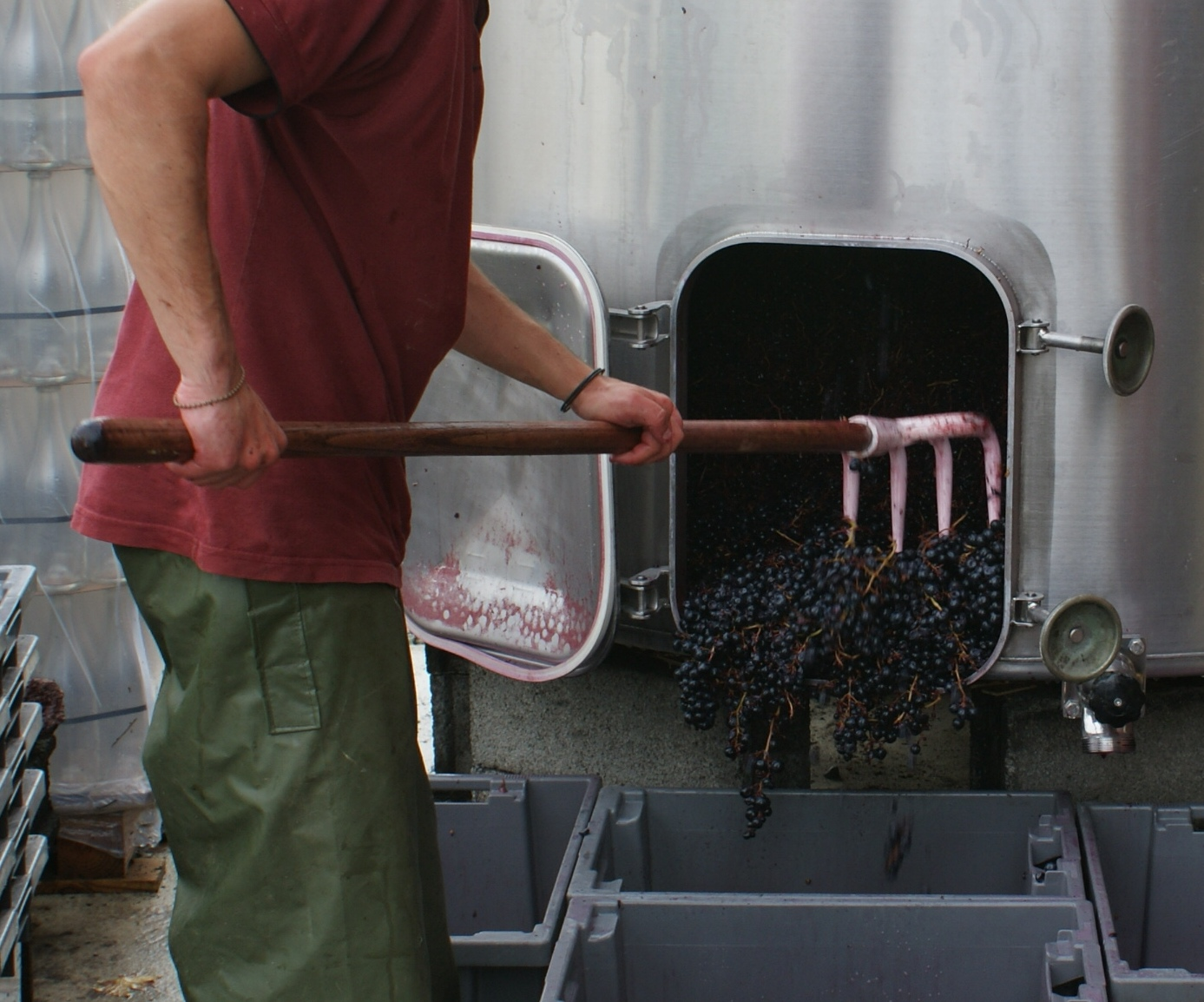 Des centaines d'emplois à pourvoir en viticulture