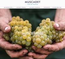 Les Vins de Nantes ont leur site web