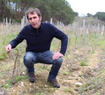 En Vendée, la conversion au bio s'accélère
