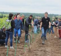 Plantations solidaires avec Les Vignes de Nantes