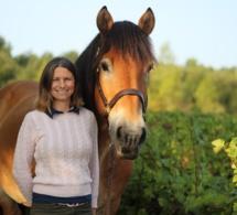 Travail du sol : le cheval en partenaire