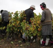 Valore développe un projet d'habitat ouvrier près de Nantes